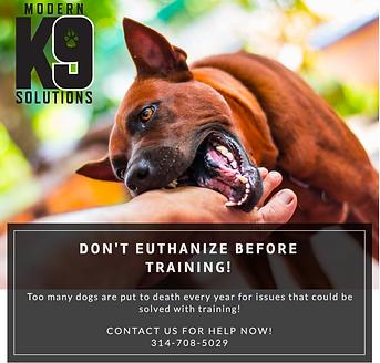 Aggressive Dog Ad 2.png