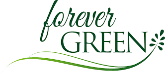 Forever Green.png