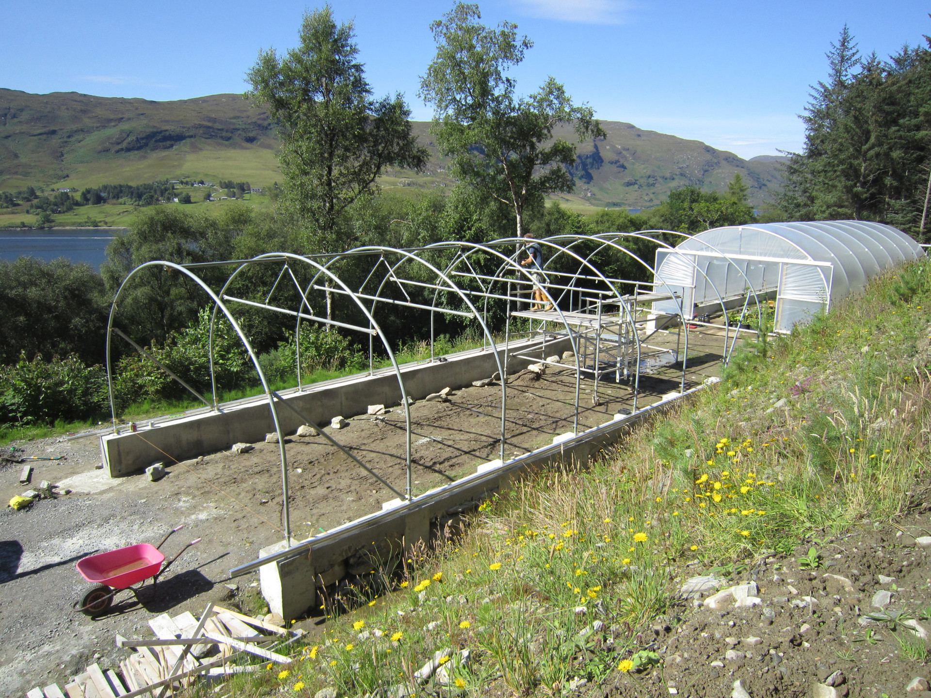 Own polytunnels