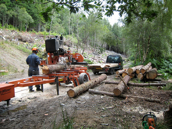 mobile sawmill processing sustainable local grown timber