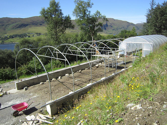 Woodland Croft polytunnels at Leckmelm Wood near Ullapool