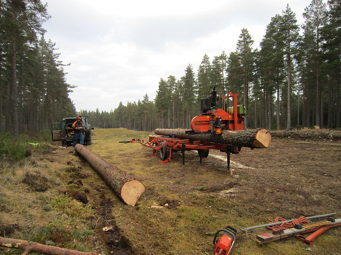 a mobile sawmill processing sustainable scottish grown timber