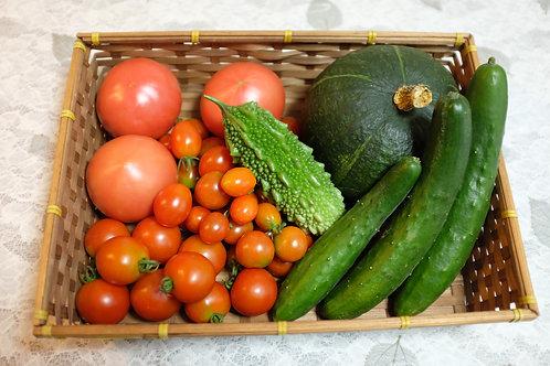 夏の旬野菜詰め合わせ