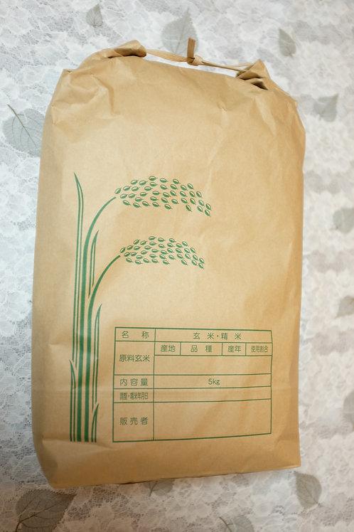 高原の神米(5kg)