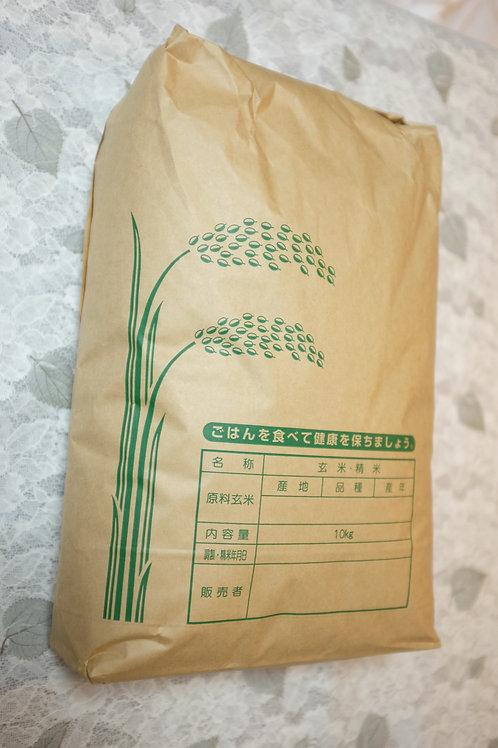 高原の神米(10kg)