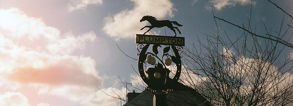 Plumpton, East Sussex, 2016, Plumpton village sign, with light leak on minolta x300, iso400