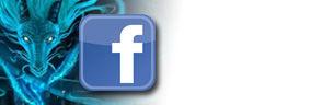 facebook toumalines