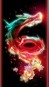 danse avec les dragons.jpg