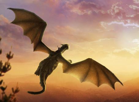 Aventure avec les Dragons