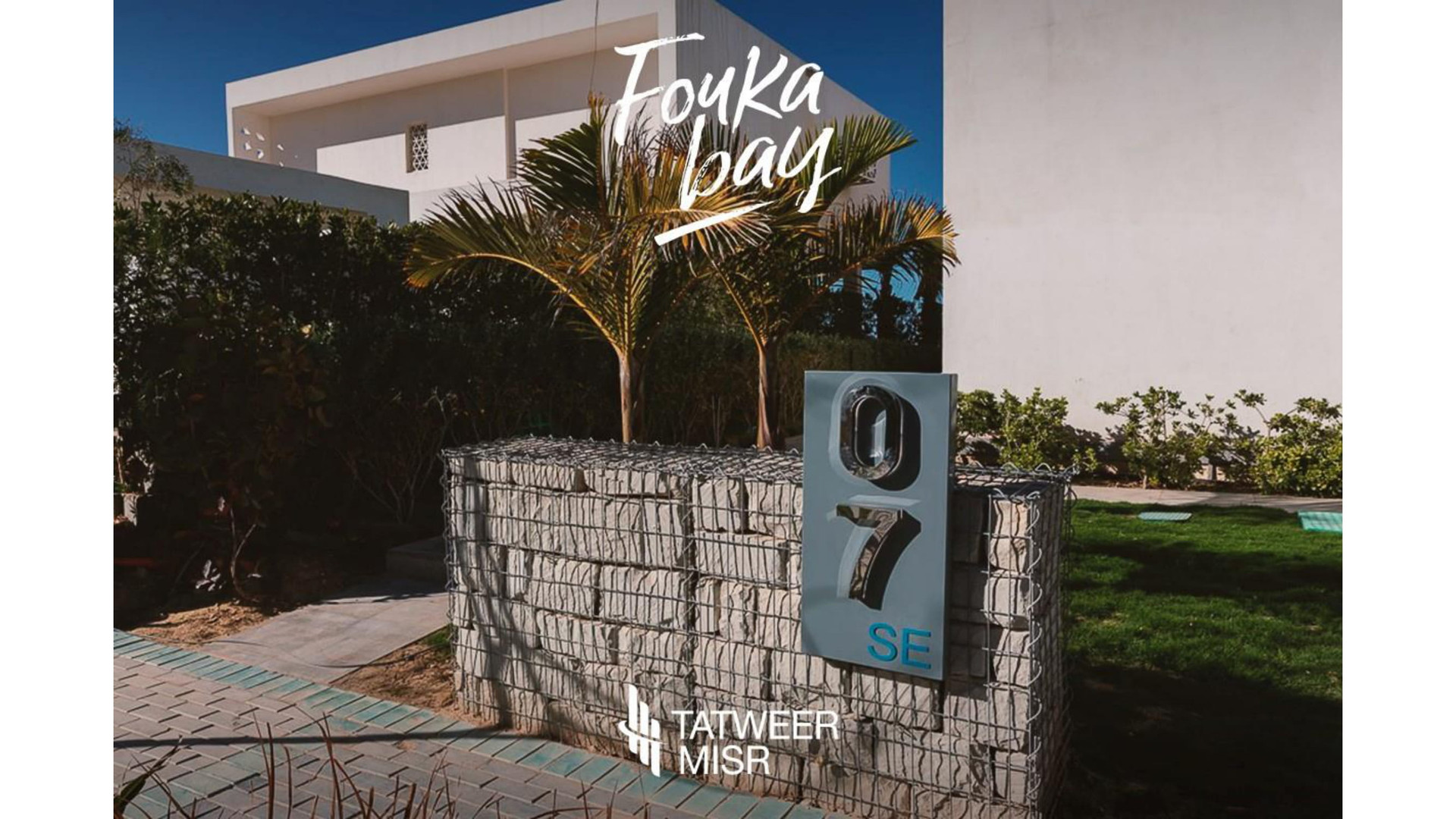 Fouka Live Photos-13.jpg