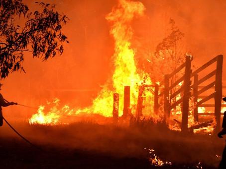 Airbnb oferece moradia de emergência gratuita para desabrigados por incêndios na Austrália