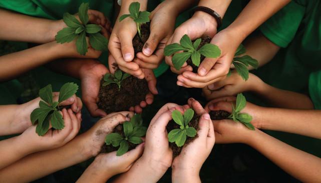 Observatório da Saúde realiza  fórum para debater problemas ambientais e suas consequências à saúde