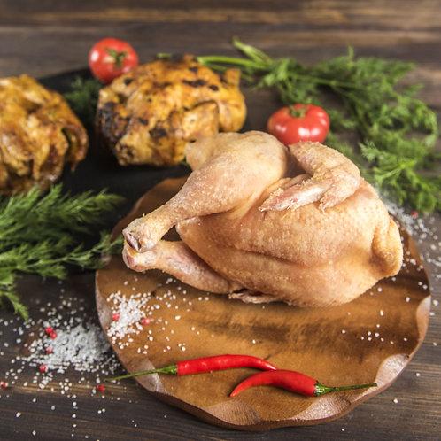 Корнишон домашний (цыпленок)