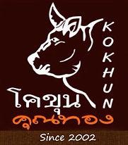 โคขุนคุณทอง kokhun