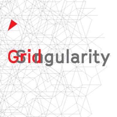 Grid Singularity