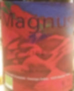 magnus_edited.jpg