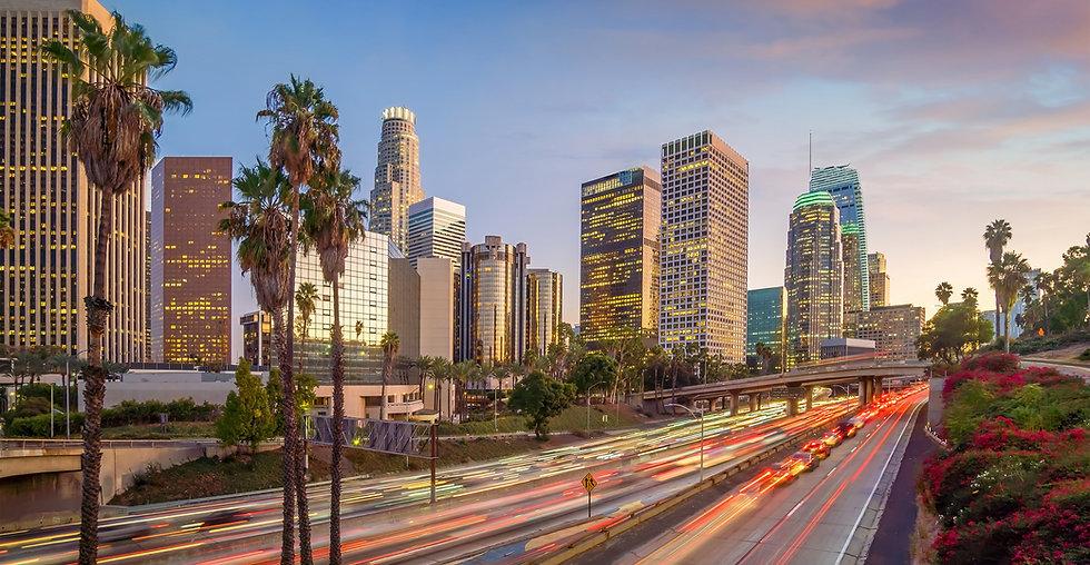 LOS ANGELES FREEWAY.jpg