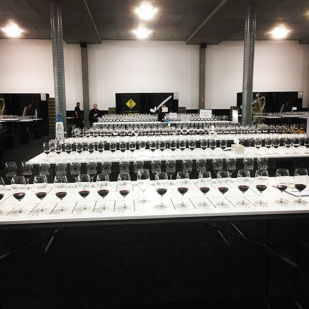 8.30am Shiraz tasting