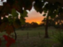 Sunrise at mr velvet ears