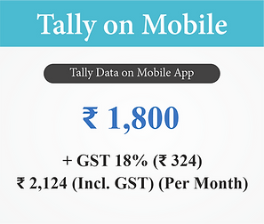 Tally on Mobile App.png