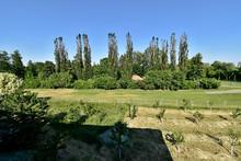 Pohled z okna na park Michalov