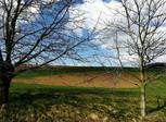 Pozemek v Hradčanech