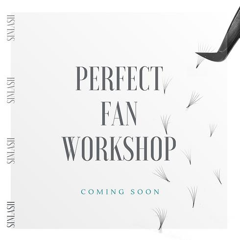 Perfect Fan Workshop