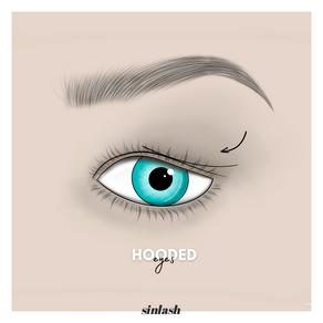 Hooded eyes 👀