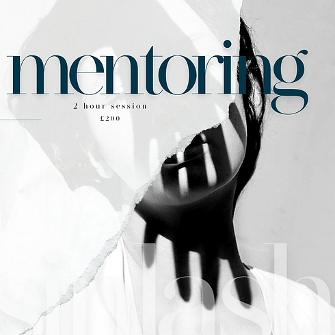 2 Hour Mentoring Session