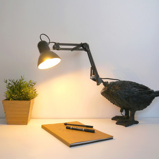 OKINA AHIRU [ lampe de canard ]