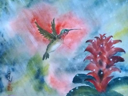 Hummingbird and DewDrops, Carol Waite.JP