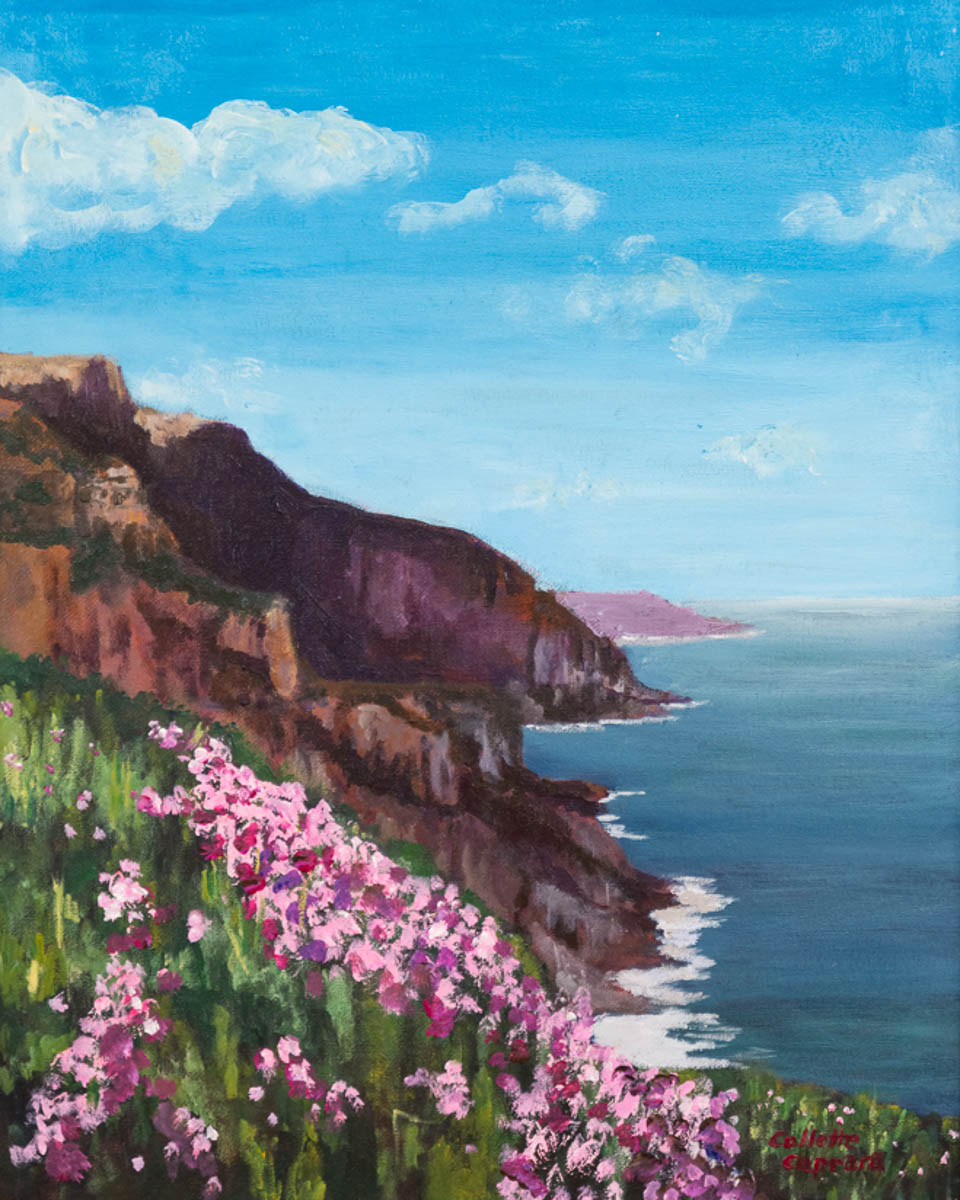 """Cliffside Beauty"" by Collette Caprara"