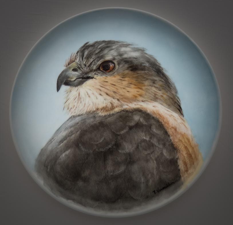 Heratio Hawk, Trish Vermillion