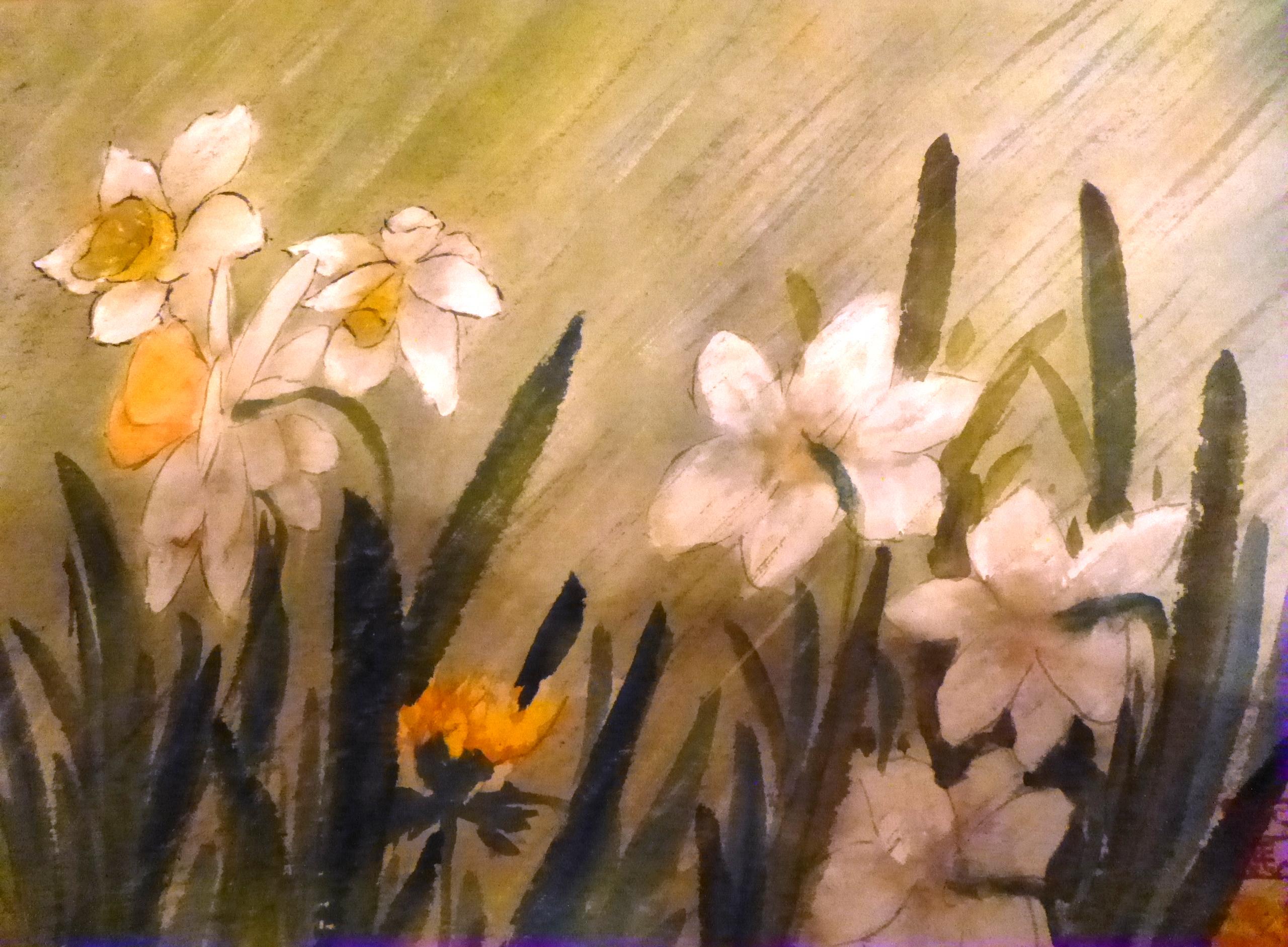 Daffodils, Carol Waite