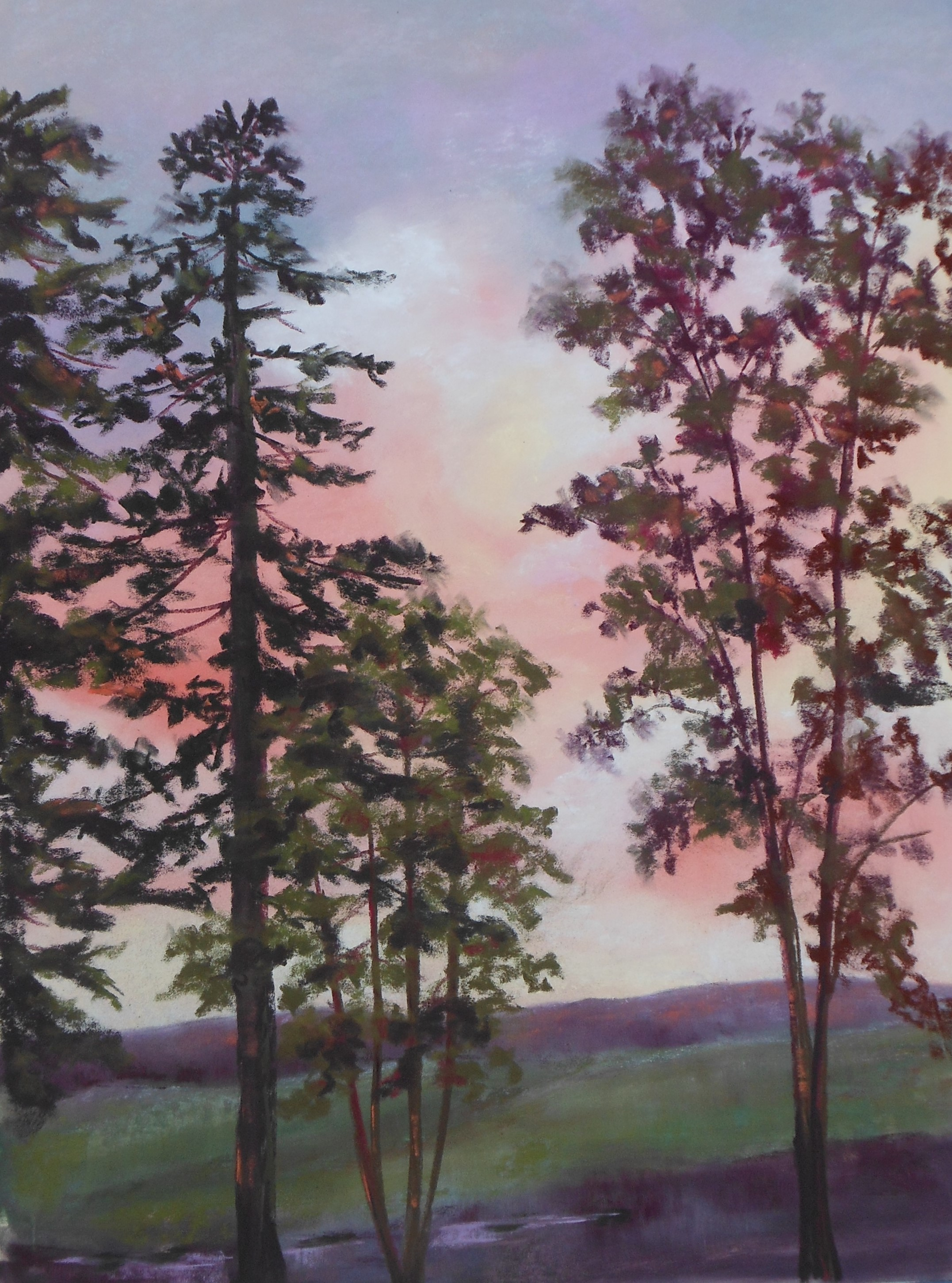 After the Storm, Kathleen Willingham