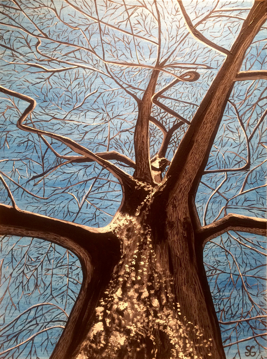 January Branches, Stacy Gaglio