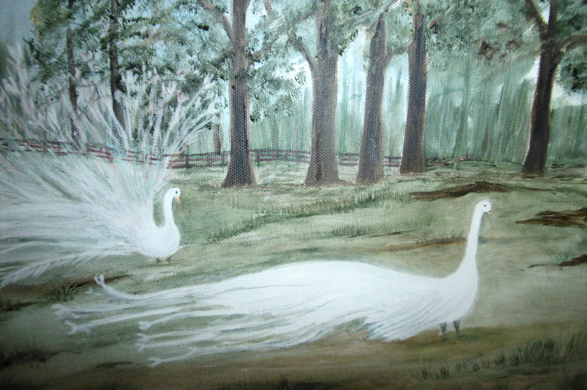Sarah Flinn, White Peacocks