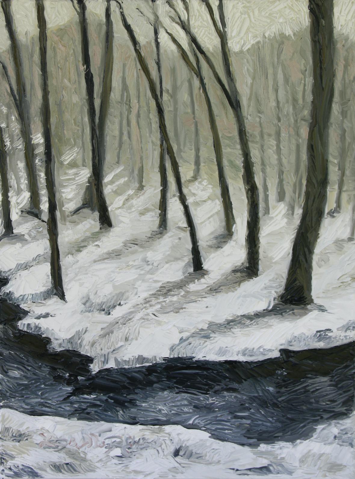 Alum Springs In Winter