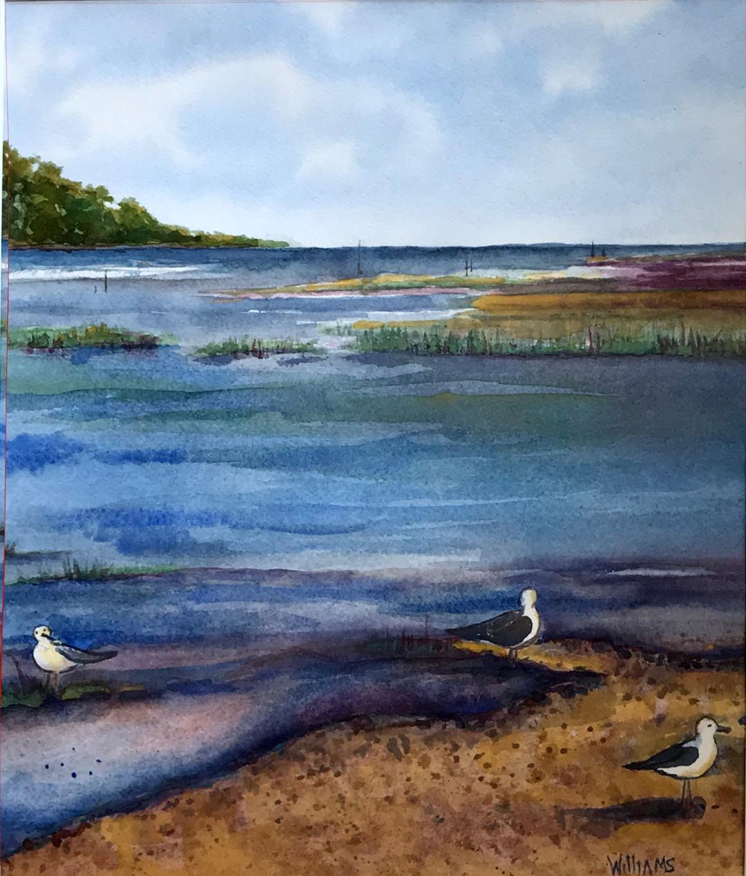 Gulls at Aquia Creek, Nancy William
