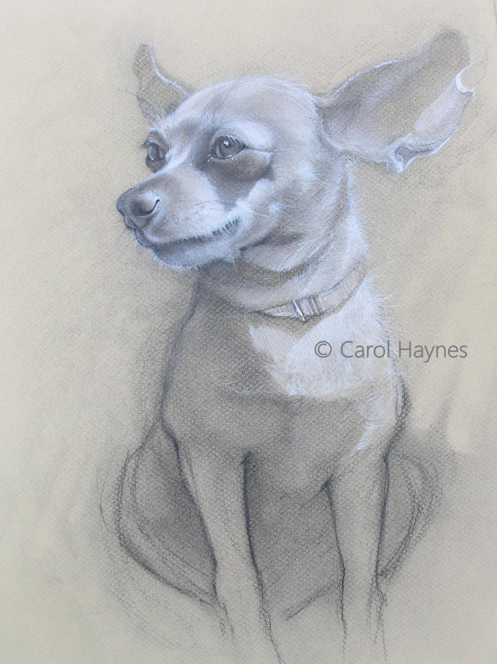 Carol Haynes, Who bit Riley's Ear?