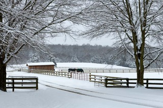 """""""Snow at Rose Mount Farm,"""" by Buddy Lauer."""