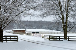 """Snow at Rose Mount Farm,"" by Buddy Lauer."