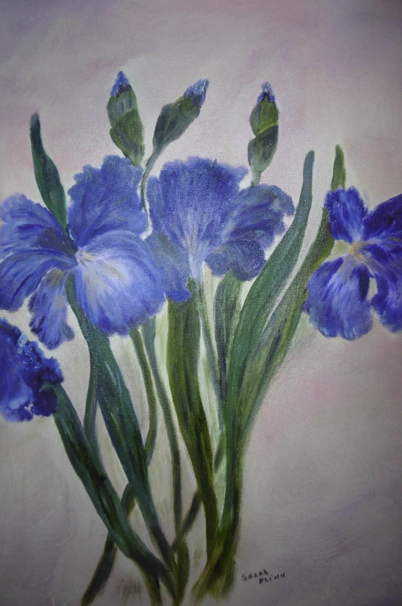 Purple Iris, Sarah Flinn