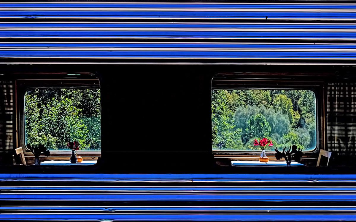 """Lunch on the Train"" by Norma Woodward"