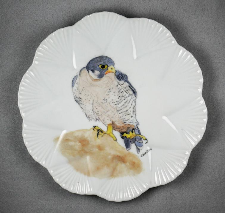 Falcon, Trish Vermillion