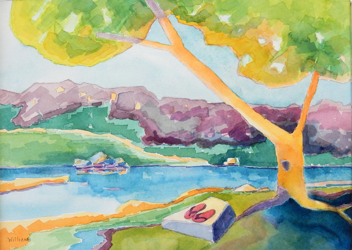 Gone Wading, Nancy Williams