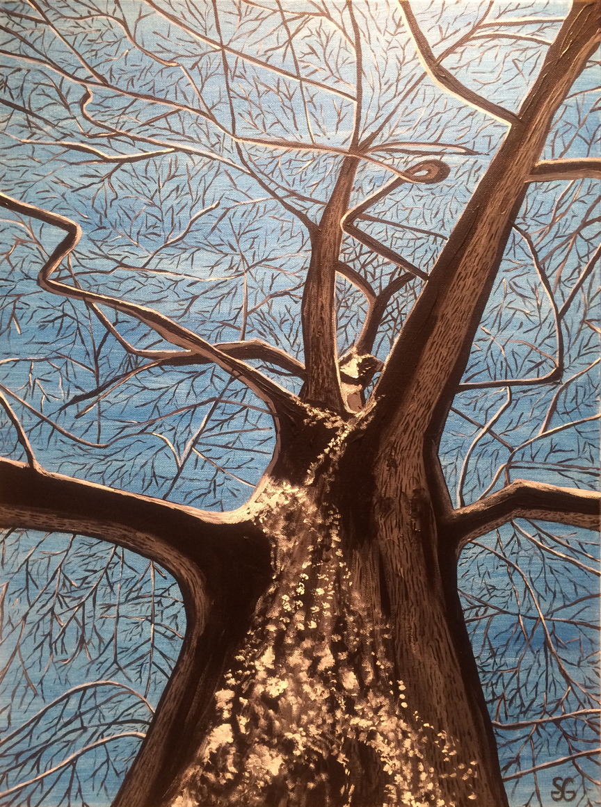 """Empty Branches,"" Stacy Gaglio"