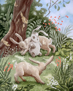 The Velveteen Rabbit 2