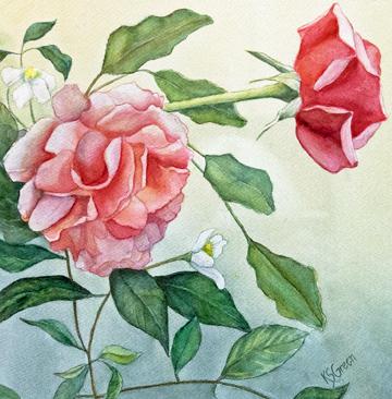 Rose Vignette, Kathrine Green