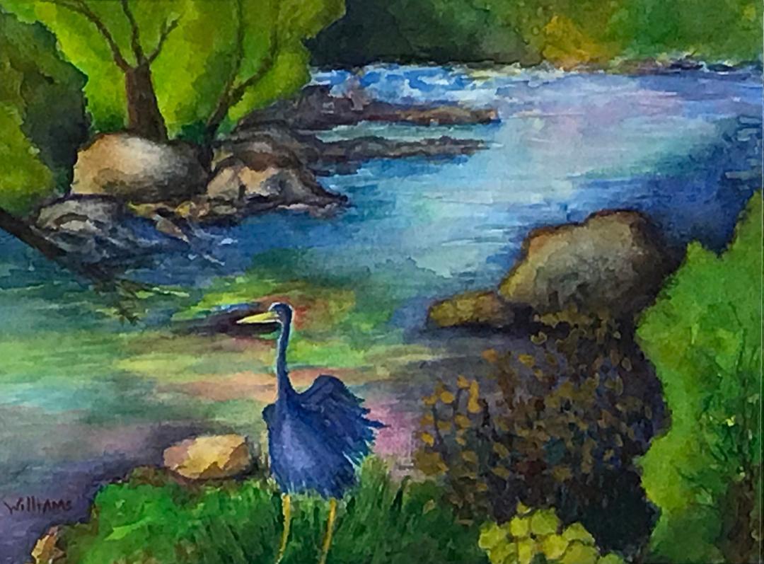 Looking Upstream, Nancy Williams